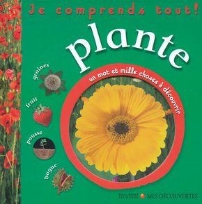 Plante -