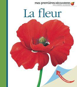 La fleur - René Mettler