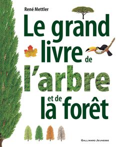 Le grand livre de l'arbre et de la forêt - René Mettler