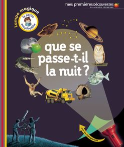 Que se passe-t-il la nuit? -  un collectif d'illustrateurs, Delphine Gravier