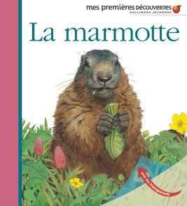 La marmotte - Sylvaine Peyrols