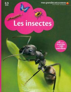 Les insectes -