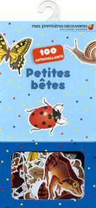 Petites bêtes -  un collectif d'illustrateurs