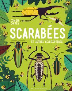 Scarabées et autres coléoptères - Owen Davey