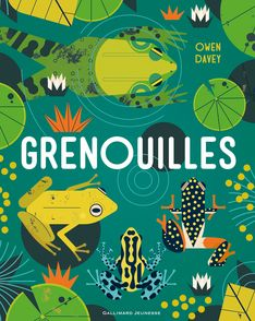 Grenouilles - Owen Davey