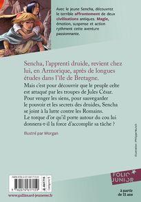 Le défi des druides - Évelyne Brisou-Pellen,  Morgan