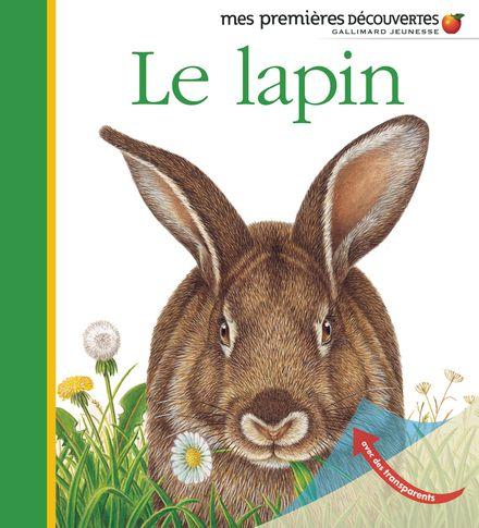 Le lapin - Pierre de Hugo