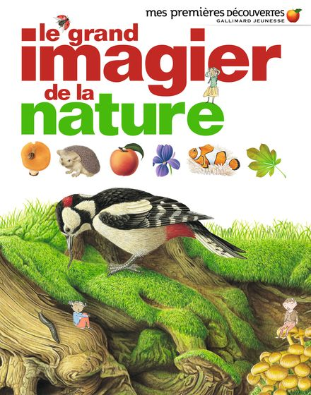 Le grand imagier de la nature -  un collectif d'illustrateurs, Delphine Gravier-Badreddine