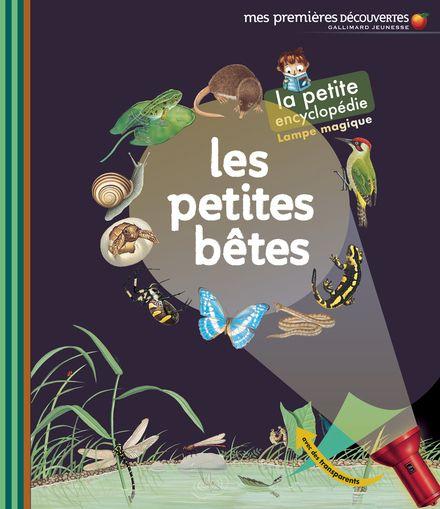 Les petites bêtes -  un collectif d'illustrateurs, Delphine Gravier-Badreddine