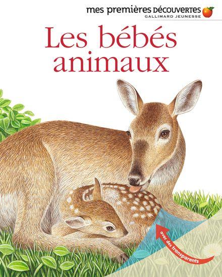 Les bébés animaux -  un collectif d'illustrateurs