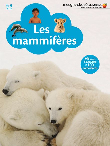 Les mammifères -