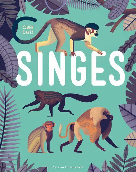 Singes - Owen Davey