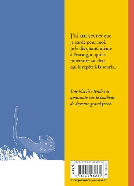 Le grand secret - Vincent Cuvellier,  Robin