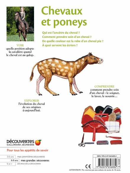 Chevaux et poneys -