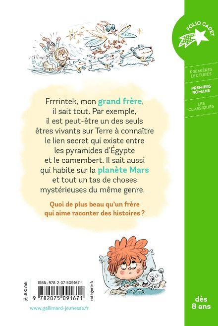 Le monde selon Frrrintek - Agnès Desarthe, Bruno Salamone