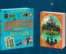 Une fin d'année magique avec Harry Potter